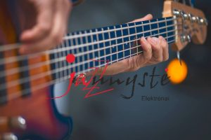 """Elektrėnų festivalyje """"Jaunystė 2017"""" – džiazo improvizacijos nuo Švedijos iki Japonijos"""