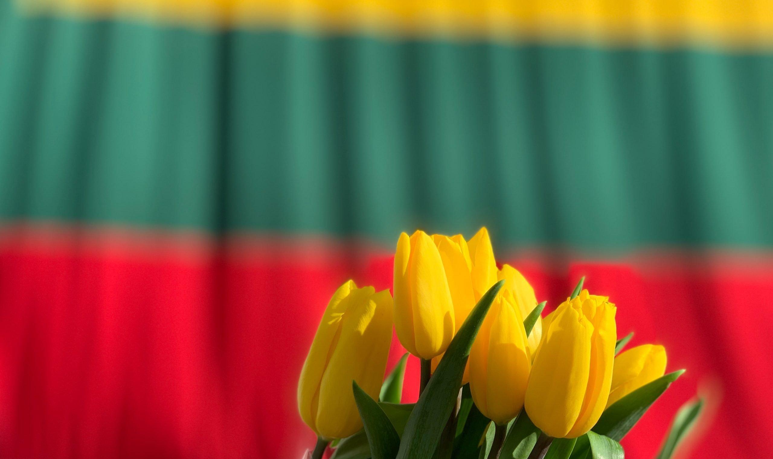 Nepriklausomybės atkūrimo 30-mečio renginiai pakvies visuomenę švęsti laisvę (programa)