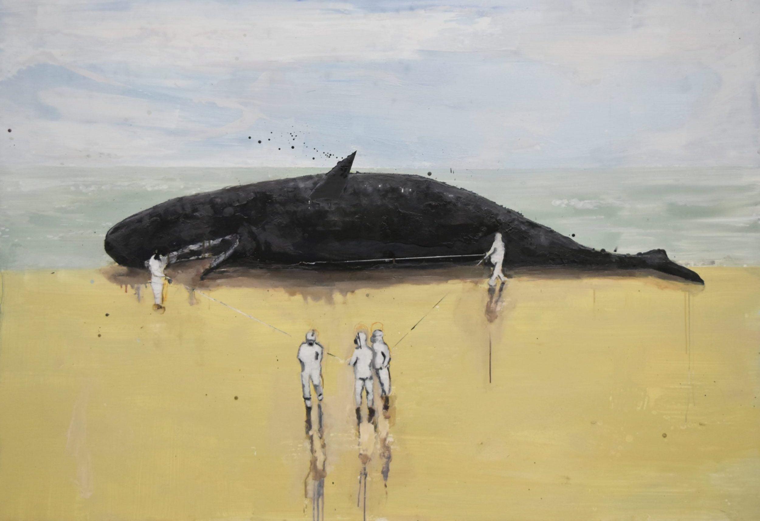"""Stebėjimas bei originalo ir kartotės klausimai –Viktoro Paukštelio parodoje """"Zelandija"""""""