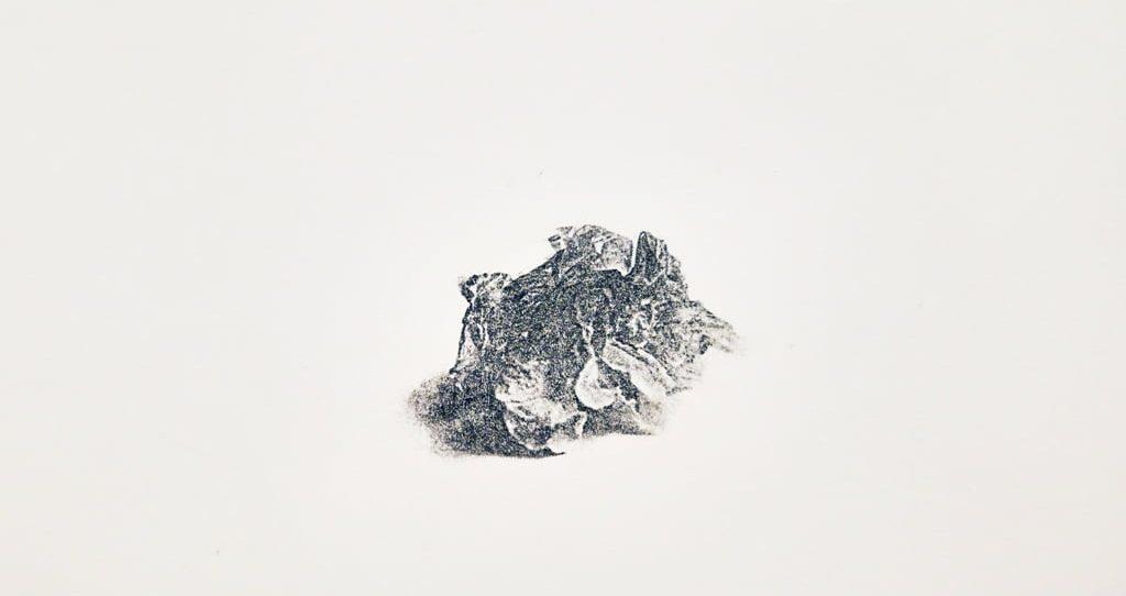 """Žvilgsnis į geologinę ateitį K. Jadevičiūtės parodoje """"Ateities fosilijos"""""""