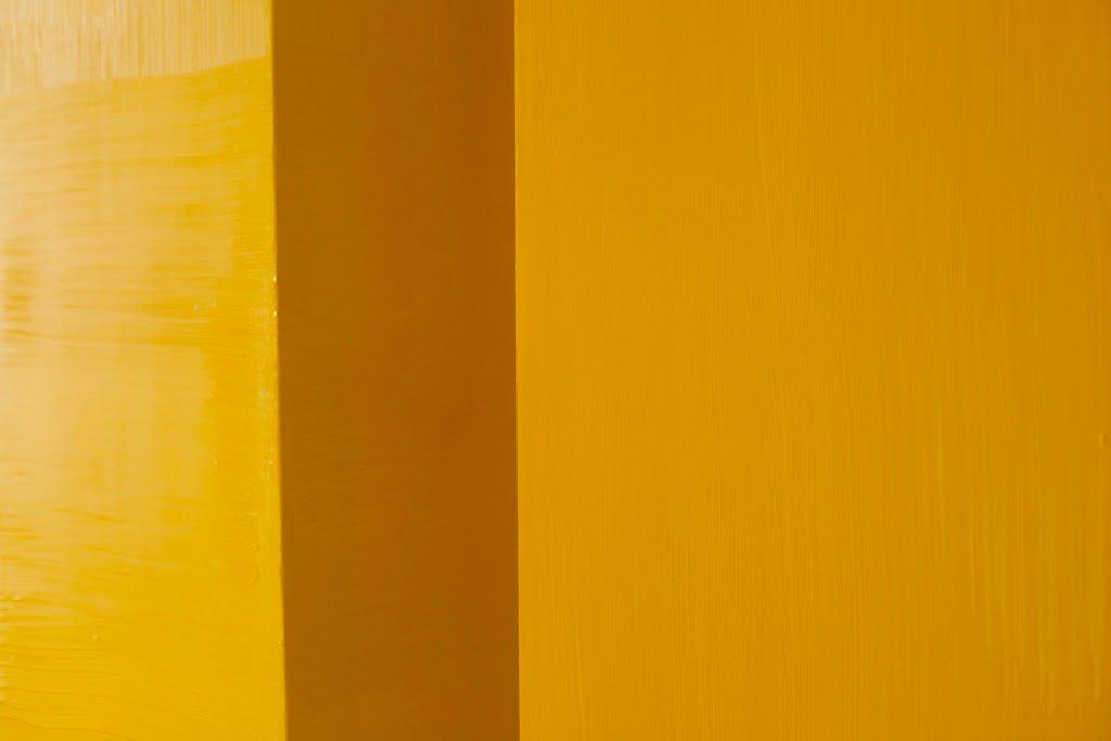 Spalvos ir kūniškumo sintezė – D. Alčauskio ir E. Petrošiūtės parodoje